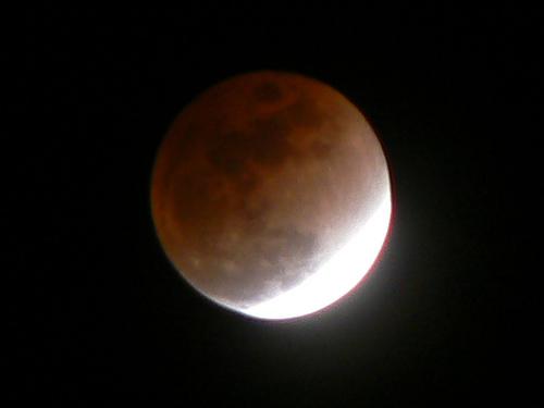 Lunar Survival Skills
